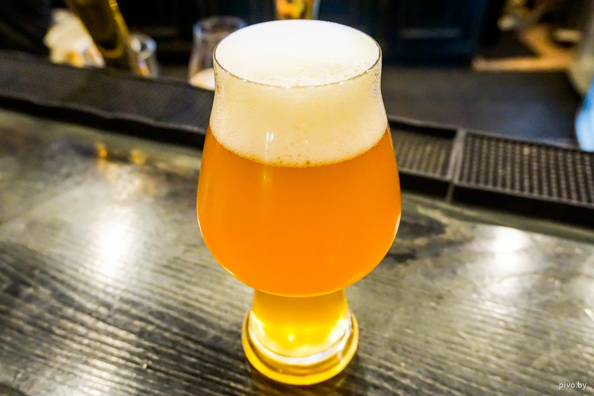 Jungle Brewery Follow the White Rabbit