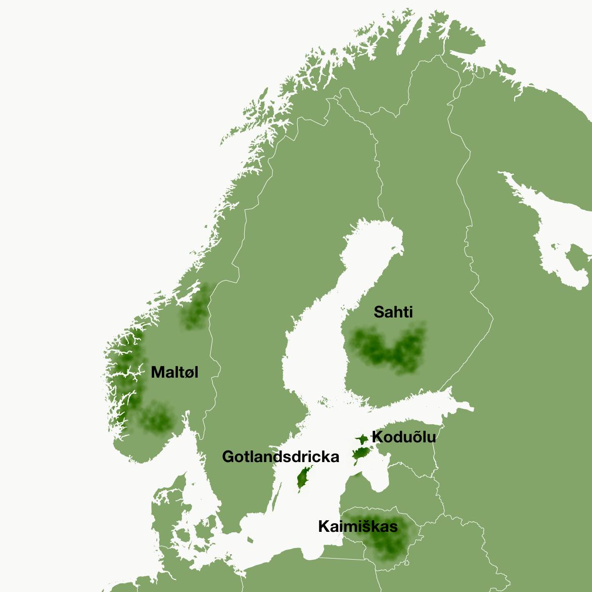 Области распространения балтийско-скандинавских традиций домашнего пивоварения