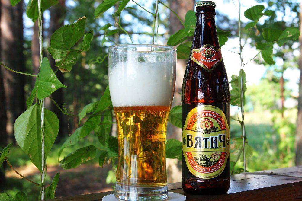 Пиво «Вятич янтарное». Фото: Vyatich