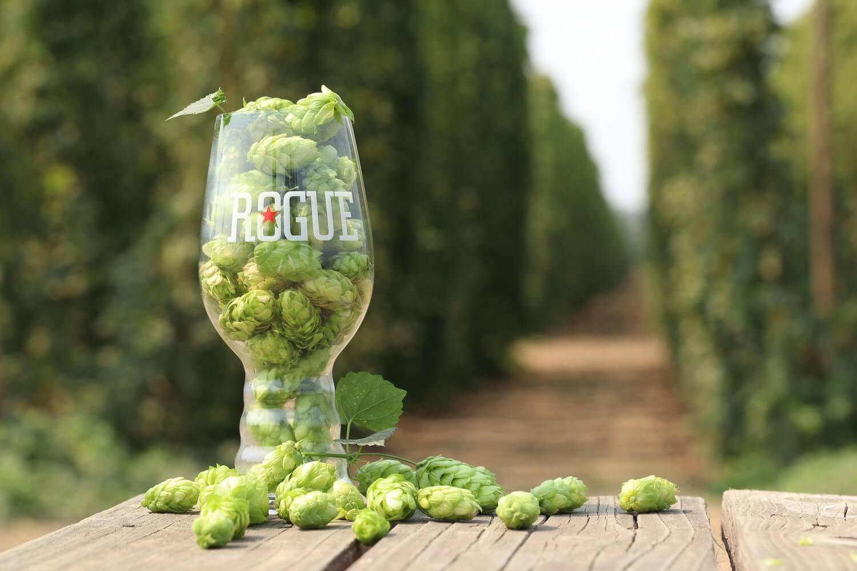 Хмель для пивоварни Rogue