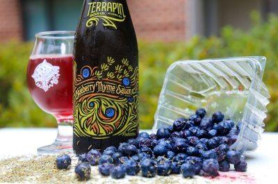 Terrapin — Blueberry Thyme Saison