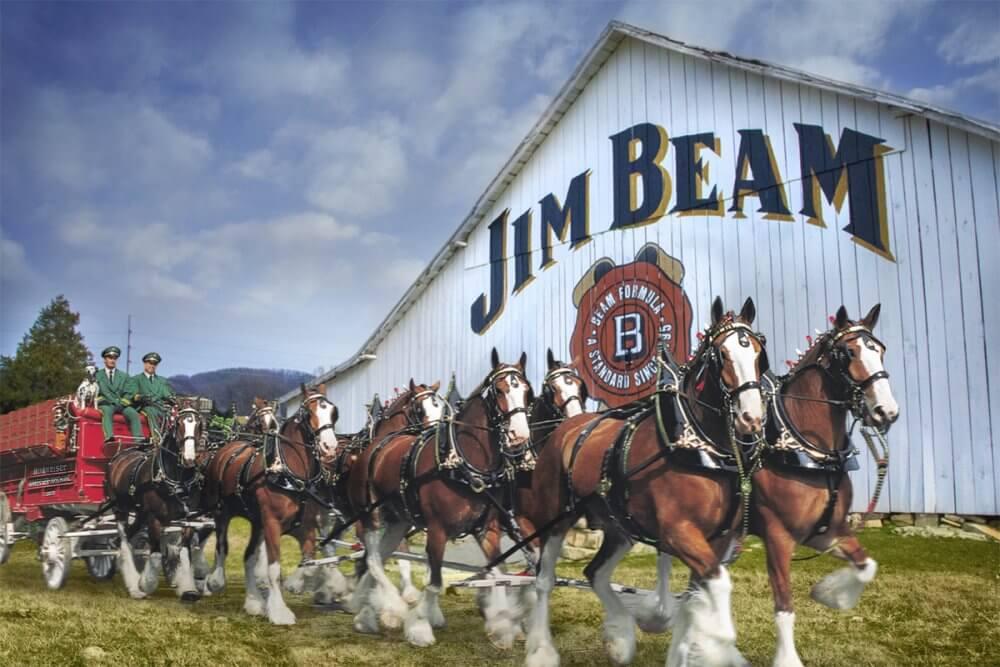 Budweiser & Jim Beam