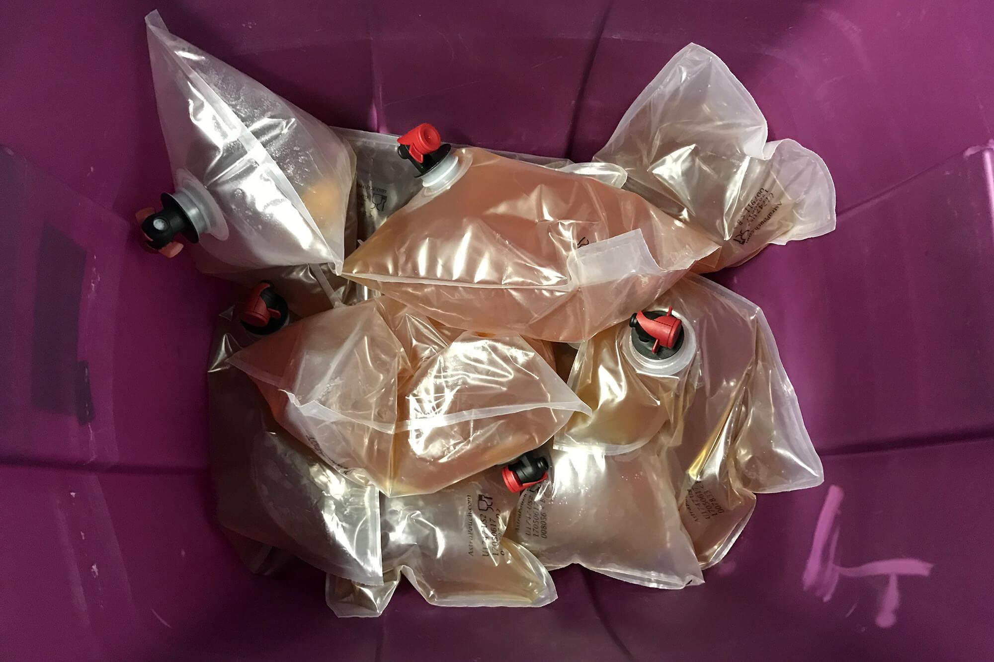 Пакеты с некарбонизированным пивом Primitive Beer