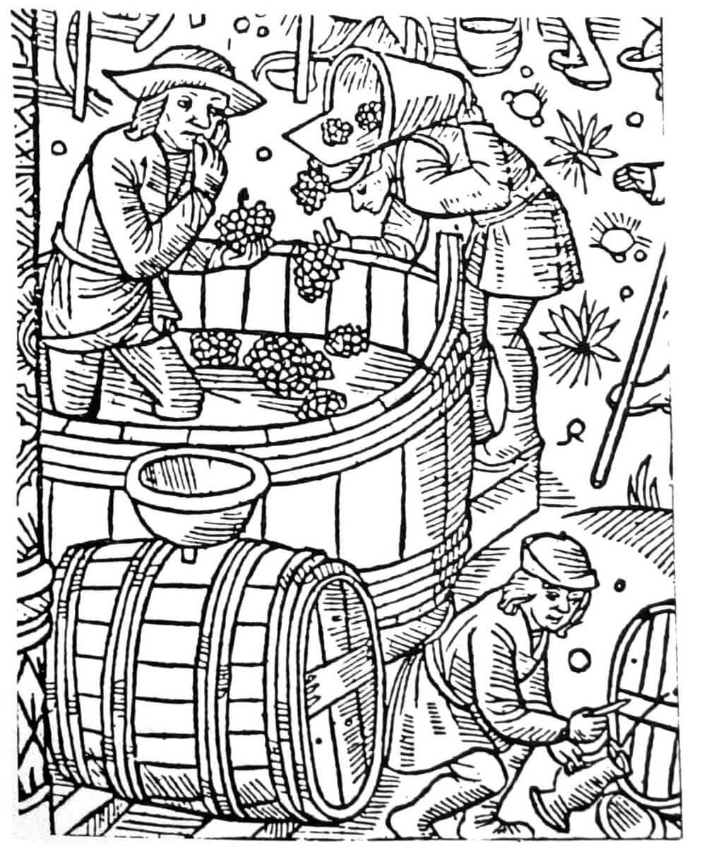 Бельгийские виноделы