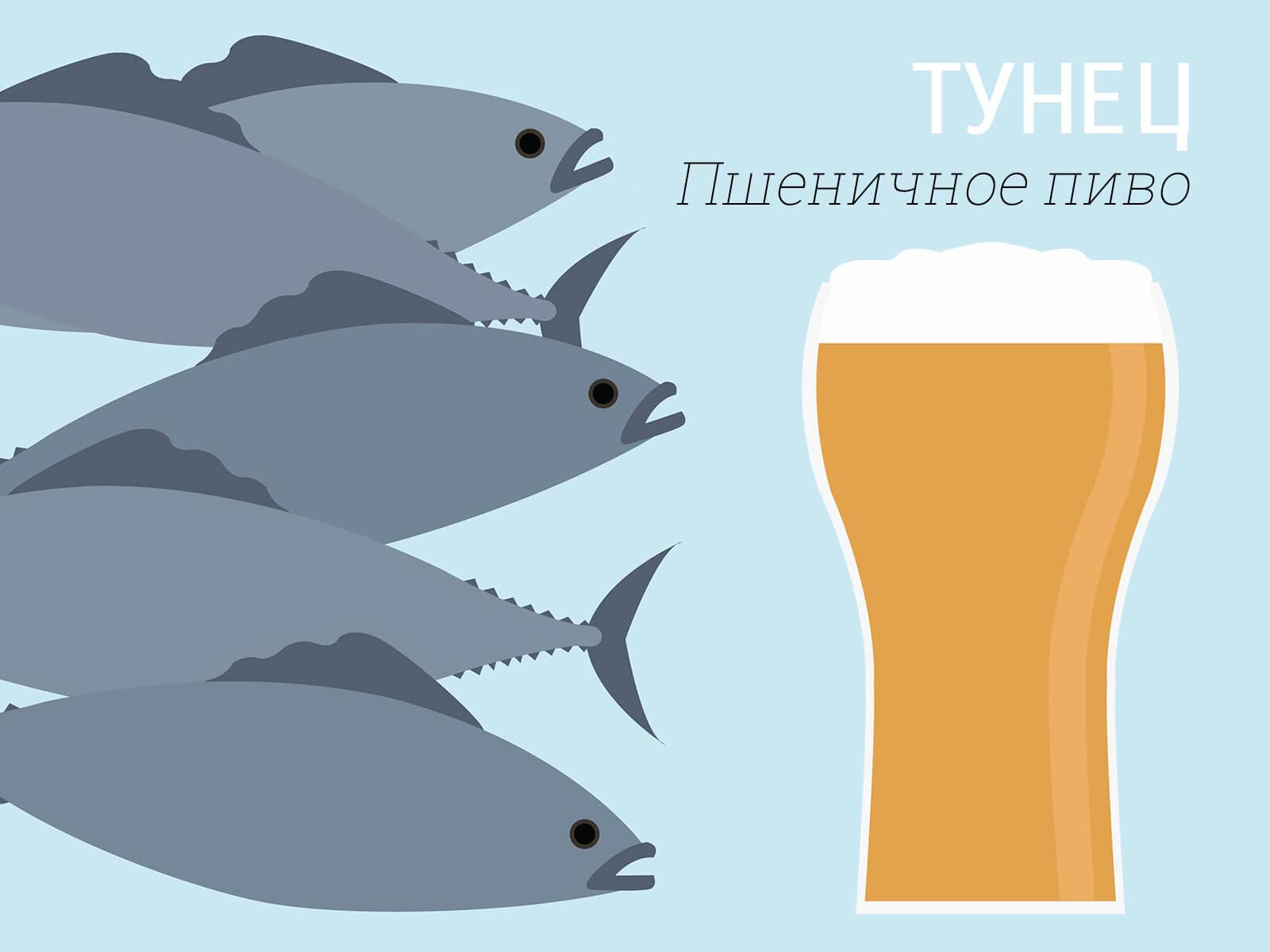 Тунец и пшеничное пиво