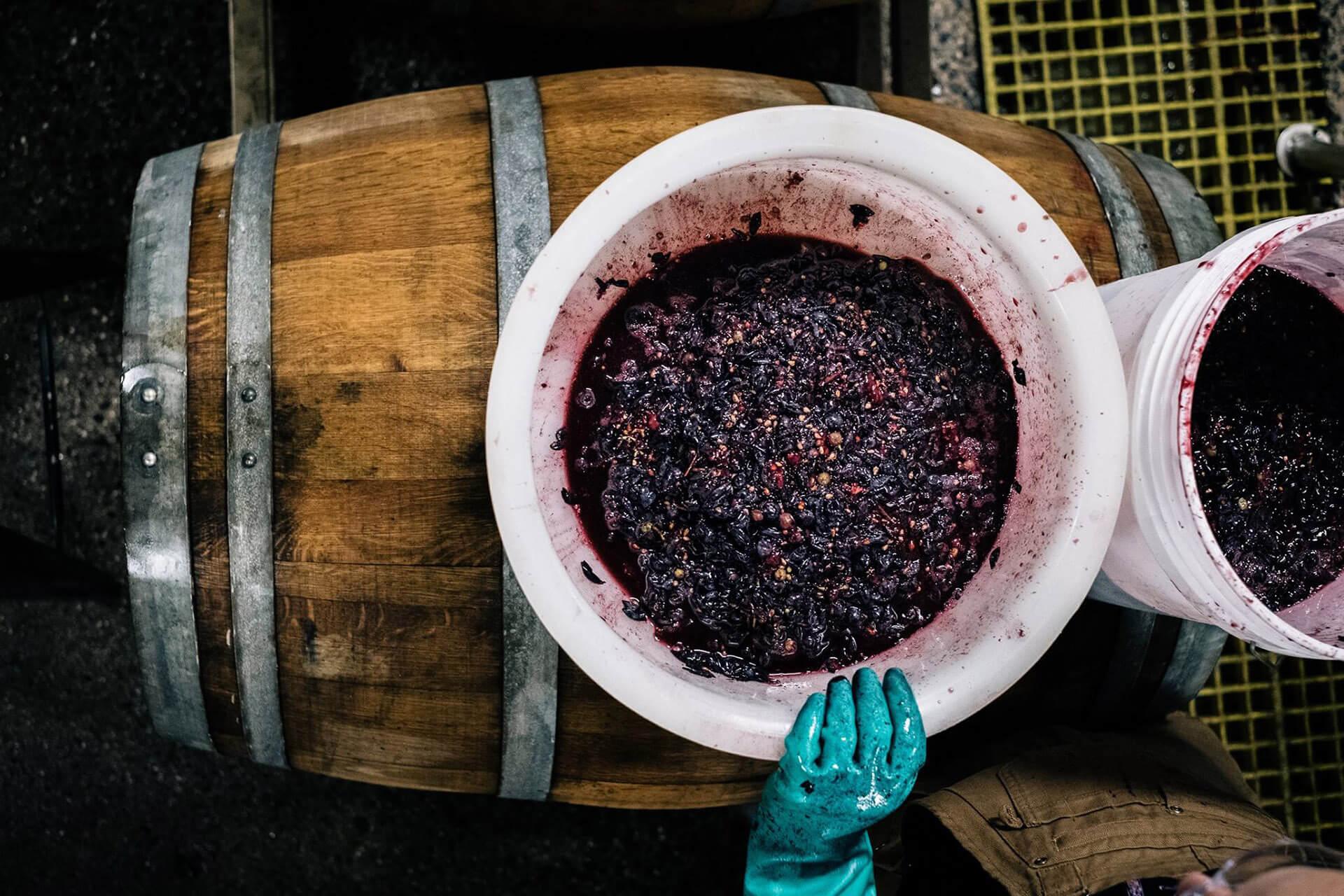 Добавление в пиво винограда на пивоварне Allagash